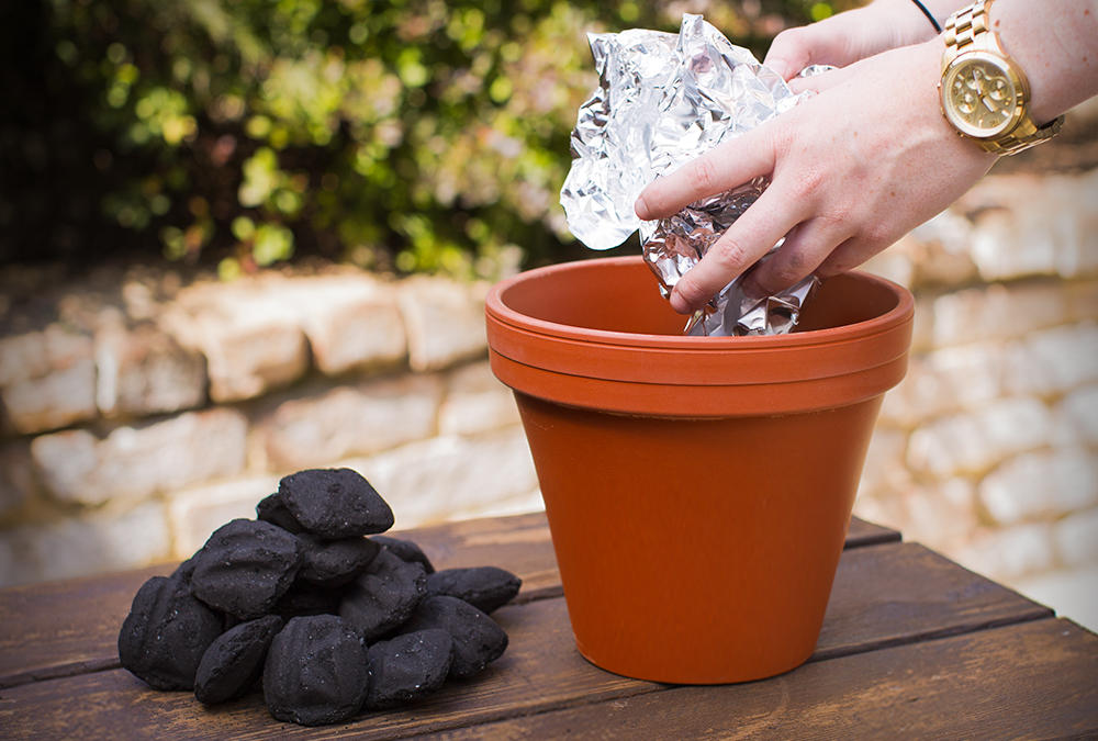 Charcoal and Flower Pot