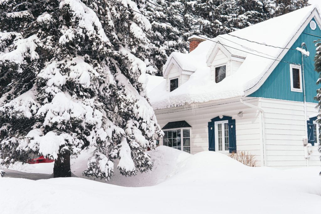 snowy house and trees